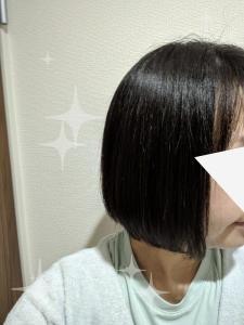 ヘアビューロン使用後の髪